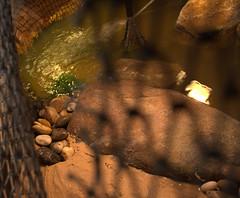 IMG_1548.CR2 (jalexartis) Tags: erosion erosioncontrol stones stonesforerosioncontrol bask basking baskingstone baskingrock aquatic aquatichabitat aquarium abovetanknetting turtlesecurity fallsafe lighting perspective jalexartis