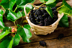the berries of an organic mulberry (Zoryanchik) Tags: mulberry fruit organic fresh black food healthy sweet ripe berry raw summer background tasty juicy closeup natural leaf freshness vegetarian juice nature shiny mulberries red green purple group wooden colorful wood table