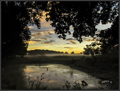The Frog Pool. (Picture post.) Tags: landscape nature green water frogs sunrise reflections trees clouds summertime mist paysage arbre eau brume fields countryside interestingness