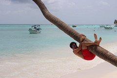 (garbieaierbe) Tags: puntacana aguascristalinas arenablanca playa colgadodecocotero republicadominicana islasaona