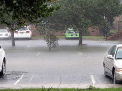 Our Parking Spots. (dccradio) Tags: lumberton nc northcarolina robesoncounty hurricanematthew matthew hurricane storm weather stormy rain raining rainy disaster flooding water bodyofwater tree trees greenery