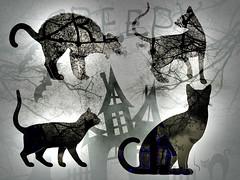 A Surreal Night (soniaadammurray - OFF) Tags: digitalphotography manipulated experimental blackwhite halloween cats house fence creepy trees bats clouds