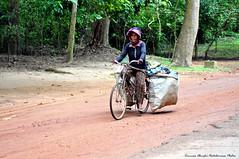 Raccoglitori di oggi - Today's gatherers - Recolectores de hoy (Dedalomouse Photos) Tags: cambodia cambogia street streetphoto asia indocina tommasoolmeda tommaso travel olmeda dedalomouse viaggio viaje strada strade calle road people persone personas gente angkor angkorwat bici bicicletta bike vel