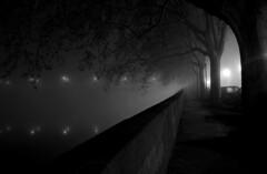 Pont Neuf (gandrephotography) Tags: toulouse pont neuf night nuit