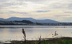 5105 Caernarfon cloudscape and reflections (Andy - Daft as a brush - don't ask!) Tags: 20161021 brynsiencyn cymru menaistraits mermaid mmm northwales reflections rrr skyscape sss water www