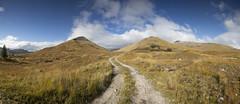 (Ollie Morris) Tags: olliemorris leadbetter74 landscape pano panorama path mountain trees clouds leefilter scotland glenmoriston inverness
