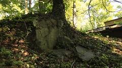 Mount Pleasant Cemetery (Laura Gonzalez/ PBNPhotography) Tags: newark newjersey mount pleasant cemetery passaic essex abandoned 2016 henrywilliamherbert