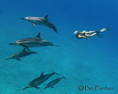 Emily at Ho'okena (bodiver) Tags: hawaii hookena ambientlight wideangle sand fins freediving peopleunderwater
