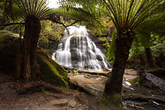 Henderson Falls (Darcy Richardson) Tags: lorne victoria australia hike waterfall cascades ferns canon 50d hendersonfalls landscape outdoor greatoceanroad roadtrip