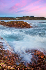 Rockshelf Motion || MACAULEY'S HEADLAND || COFFS HARBOUR (rhyspope) Tags: australia aussie nsw new south wales coffs harbour macauleys headland sunrise sea ocean rhys pope rhyspope canon 5d mkii rocks waves water nature natural long exposure sky color colour diggers beach