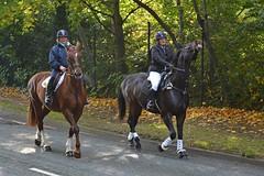 riding along Riverside Drive (napoleon666uk) Tags: liverpool international horse festival liverpoolinternationalhorsefestival horseshow echoarena animal parade