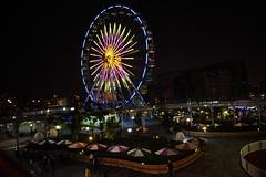 DSC_3150 (ppeng@yahoo) Tags: night nikon taipei 台北 2470 d810 taipeichildrensamusementpark 兒童新樂園 台北兒童新樂園