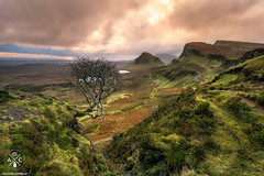 King of Quiraing (Antonio Carrillo (Ancalop)) Tags: mountains tree skye sunshine clouds canon landscape island scotland soft long exposure mark paisaje escocia amanecer highland filter le ii 09 lee nubes 5d dslr antonio isle 1740mm carrillo graduated density larga ecosse neutral exposicin filtro quiraing filtros neutra gnd densidad ancalop lucroit