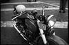 (Moto Guzzi Falcone 500)