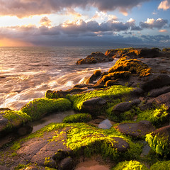 Kaanapali Glow (mojo2u) Tags: ocean hawaii maui kaanapali alge sealettuce greenalge