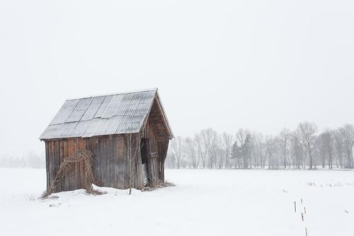 Shelter in Blizzard