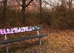 bench (en3llen) Tags: city leaves bench graffiti sweden pathway