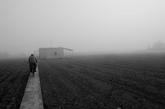 cycling to farm (miquelinus) Tags: white black fog cycle farmer