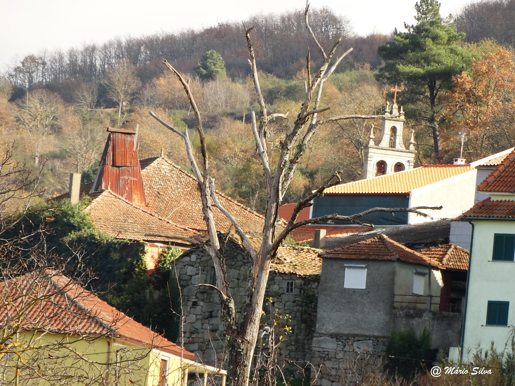 """Águas Frias (Chaves) - ... a árvore """"morta"""" entre a velha chaminé e a torre da Igreja ..."""