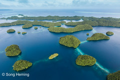 Palau islands aerial view (NiCK) Tags: ocean sea sky cloud tree water coral island aerial helicopter palau atoll