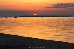 Ammirando il tramonto (Antonio Ciriello) Tags: taranto puglia apulia sanvito san vito italia italy south meridione sud vialedeltramonto tramonto sunset sun sole mare sea seascapes paesaggimarini colours colori caldo hot spiagga beach isole isle islands beachumbrella umbrella umbrellas ombrelloni canoneos600d canon eos600d 600d rebelt3i tamron 70300vcusd 70300vc 70300 tamron70300vc