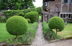 Bakers House - Open Garden in Shipley, Sussex (Mark Wordy) Tags: trees topiary westsussex path entrance caminhos shipley ngs nationalgardensscheme opengarden bakershouse