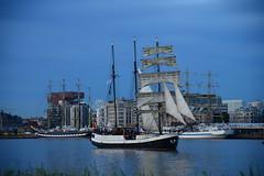 Tall Ships Race 2016 Marjorie DST_4714 (larry_antwerp) Tags: 2016 antwerp antwerpen       port        belgium belgi          schip ship vessel        schelde        marjorie sailing tallship tallshipsrace