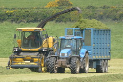 New Holland FR9080 SPFH filling a Dooley Silage Trailer drawn by a New Holland T6070 Tractor (Shane Casey CK25) Tags: county new blue ireland winter horse irish tractor holland field grass work pull hp nikon power cattle cows cut earth farm cork farming working machine ground nh machinery soil crop cutting feed farmer trailer agriculture drawn dooley silage pulling contractor filling horsepower fodder lifting youghal cnh agri newholland spfh d7100 grass16 t6070 fr9080 silage16 silage2016 grass2016