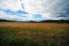 Adironack Loj Road (hm_photography) Tags: adirondacks adirondackmountains statepark upstatenewyork ny scenery naturephotography nature naturallight mountains travelphotography usa scenic adirondack state park travel landscape