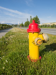 Icelandic fire hydrant (James E. Petts) Tags: iceland reykjavik firehydrant red yellow