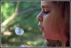 L'enfant et la fleur ! (Les photos de LN) Tags: enfant enfance regard fleur chandelle portrait nature innocence douceur