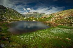 Petit lac au col du Grimsel. (Olivier Rapin) Tags: sonyalpha7 grimsel col pass alps alpes berne bern suisse switzerland swiss montains montagnes lac lake minolta1735mm