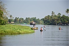 Navigating the Backwaters (The Spirit of the World) Tags: backwaters india kerala boats canoes oars locals lake palmtrees tropical landscape waterscape water southernindia houseboat tourism shoreline nature