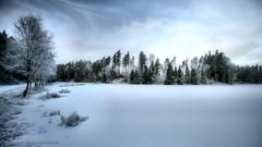 108K5490 (koppomcolors) Tags: winter vinter sweden sverige scandinavia värmland varmland koppomcolors