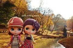 Happy Memory in Fairly Land♪