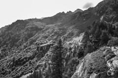 Cascata del Toce (guillaume_roger_aussant) Tags: cloud green bird water del montagne alpes grande aqua eau europe plus nuages cascade montain wateer cascata toce alpa