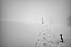 direction Holzegg (SZ) (Toni_V) Tags: schnee winter bw mist snow monochrome fog schweiz switzerland blackwhite europe nebel suisse 28mm rangefinder snowshoeing mp minimalism svizzera raquette schwyz 2015 svizra leicam schneeschuh schneeschuhlaufen schneeschuhwanderung elmaritm holzegg 150228 typ240 toniv brunniholzeggfurggelenstockoberiberg m2402298
