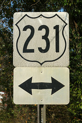 Old US 231 Sign (formulanone) Tags: sign florida faded arrow cracking 231 us231 usroute
