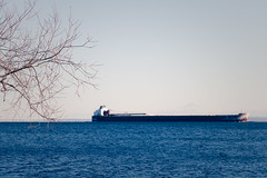 Winter Laker, Duluth (Sharon Mollerus) Tags: minnesota port ship unitedstates branches greatlakes fc duluth lakesuperior c14 20150101img9182duluthcr2