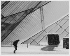 Bending (Our Sweetest Songs) Tags: winter snow toronto snowstorm sidewalk rom royalontariomuseum daniellibeskind bloorstreet michaelleechincrystal romcrystal