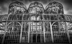 Greenhouse / Botanical Garden of Curitiba (marcelo.guerra.fotos) Tags: brazil blackandwhite blancoynegro paran brasil blackwhite cool noiretblanc curitiba jardimbotnico botanicalgarden canonefs18135mm