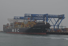 MSC Flaminia (jelpics) Tags: ocean sea boston port harbor boat ship massachusetts vessel cranes containership bostonma msc bostonharbor cargoship massport merchantship conleyterminal mscflaminia