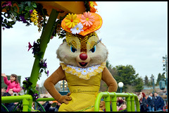 Clarice (ramonawings) Tags: boss donal dog paris france flower rabbit bunny fleur mouse duck spring alice disneyland bert donkey disney mickey parade pooh mickeymouse daisy winniethepooh pluto minnie minniemouse wdw marypoppins winnie wonderland donaldduck printemps dcl aliceinwonderland ane panpan disneylandparis dlp tdl eyore springfever paques daisyduck danseur ramoneur danseuse missbunny herisson bourriquet jardinier winnielourson stepintime cavalcata claric cocolapin tumper taupiere merveils