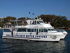 Dolphin Watchers (PhillMono) Tags: ocean new sea reflection wales port bay boat ship tour dolphin south watch australia vessel nelson olympus catamaran stephens e30