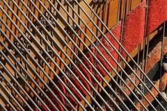 Piano Wire (R Ness photos) Tags: minolta100mmmacro sonya7 acratechballhead unilocmajortripod sonylaea3
