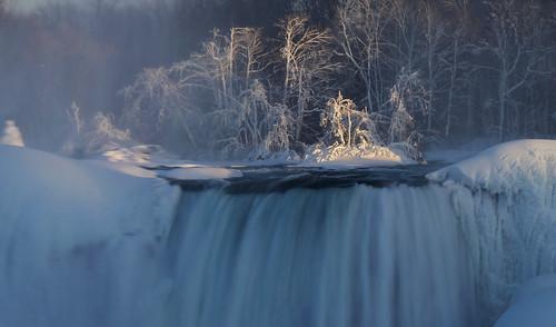 Niagara Sunset Trees