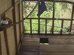 Treehouse Toilet Laos
