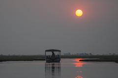 Heading Home (wenzday01) Tags: park travel cruise sunset sun nature river boat nationalpark nikon sigma botswana chobe kasane choberiver chobenationalpark d7000 chobechilwero sundownercruise nikond7000 sanctuaryretreats 120400mmf4556afapodgoshsm