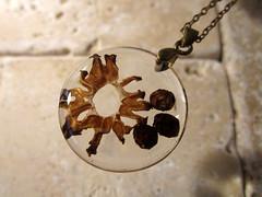 Morel Mushroom (chaerea) Tags: nature mushroom necklace crafts jewelry jewellery fungi morel mycology