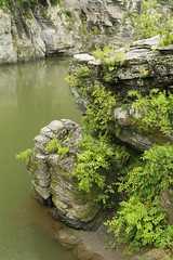 Rain in the River (tsubame) Tags: japan rivers saitama arakawa nagatoro    japanesenature